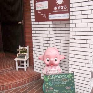 Cafe MOMO